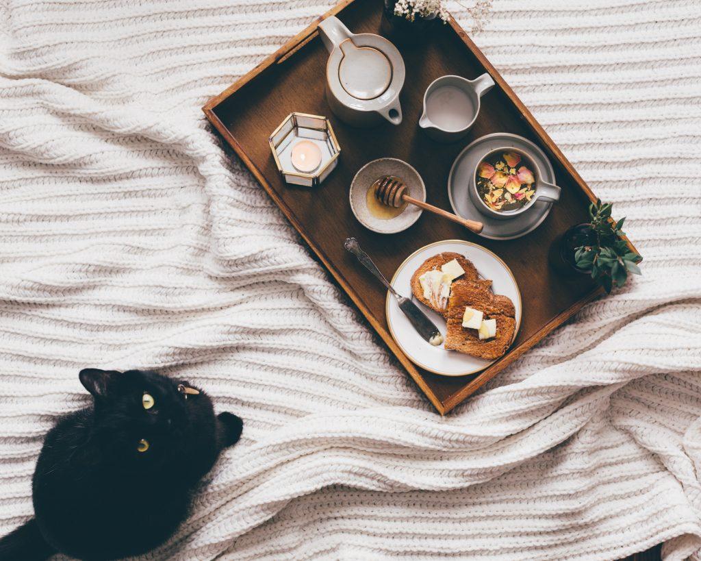 Best Cat Litter for Odor